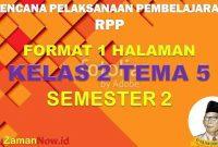 RPP 1 Lembar SD Kelas 2 Tema 5
