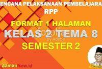 RPP 1 Lembar SD Kelas 2 Tema 8