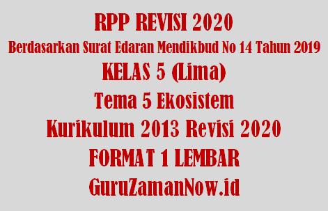 RPP 1 Lembar Kelas 5 Tema 5 Semester 1 Revisi 2020
