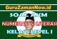 Soal AKM Literasi dan Soal AKM Numerasi Kelas 1