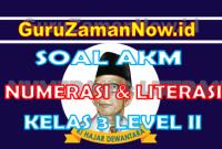 Soal AKM Literasi dan Soal AKM Numerasi Kelas 3