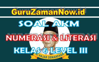 Soal AKM Literasi dan Soal AKM Numerasi Kelas 6