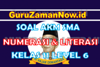 Soal AKM Literasi dan Soal AKM Numerasi SMA Kelas 11