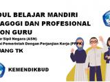 Modul Seleksi PPPK Tahun 2021 Kemendikbud Jenjang TK / PAUD