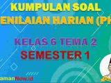 Soal PH K13 Kelas 6 Tema 2